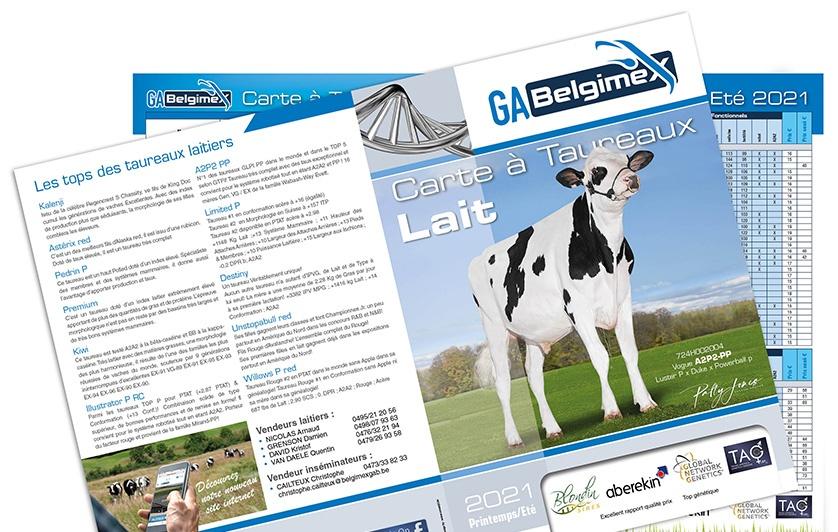Gabelgimex, Carte à taureaux, laitier