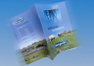 Special Summer - 2021